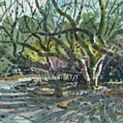 Monk Trees Two Art Print
