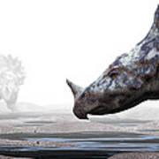 Monoclonius Dinosaur Art Print