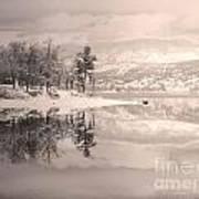 Monotone Winter Art Print