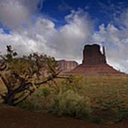 Monument Valley Vista Art Print