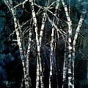 Moods Of Winter Art Print