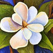 Moon Light Magnolia Art Print by Elaine Hodges