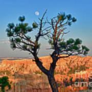 Moon Over Bryce Canyon Art Print