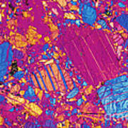 Moon Rock, Transmitted Light Micrograph Print by Michael W. Davidson - FSU