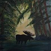Moose Pond Hideout Art Print