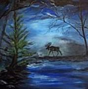 Moose Pond Art Print