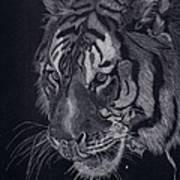 Moquito El Tigre Art Print