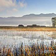 Morning Mists Of Cutler Marsh - Utah Art Print