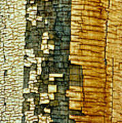 Mosaic Of Time Art Print