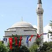 Mosque And Flags Art Print