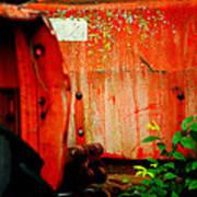 Moss And Rust V Art Print by Toni Hopper