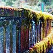 Moss Covered Bridge Art Print