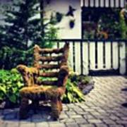 Moss Covered Chair #nature #chair Poster
