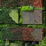 Mossy Brick Wall Art Print