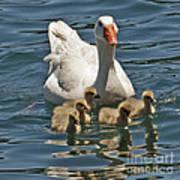 Mother Goose Plus 5 Art Print