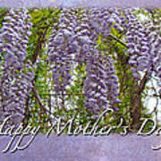 Mother's Day Card - Purple Wisteria Art Print