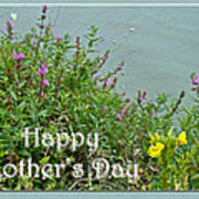 Mother's Day - Wildflowers By The Pond Art Print