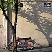 Motorcycle And Tree. Belgrade. Serbia Art Print
