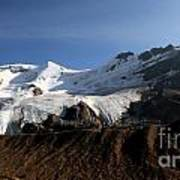 Mount Athabasca From The Columbia Icefields Art Print
