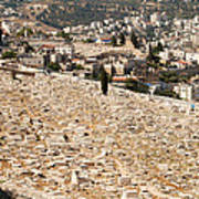 Mount Of Olives Art Print