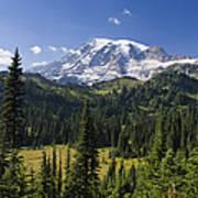 Mount Rainier With Coniferous Forest Art Print