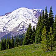 Mount Rainier X Art Print