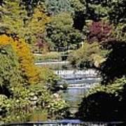 Mount Usher Gardens, River Vartry, Co Art Print
