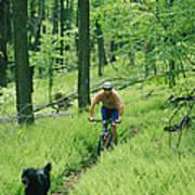 Mountain Biker And Dog On Single Track Art Print