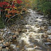 Mountain Stream In Autumn, White Art Print