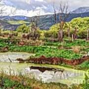 Mountain Valley Marsh - Hdr Art Print