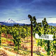 Mt Hood Winery Art Print by Vicki Jauron