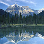 Mt Robson Highest Peak In The Canadian Art Print by Tim Fitzharris