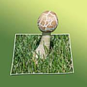 Mushroom 02 Art Print