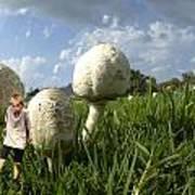 Mushroom Boy Art Print