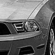Mustang 002 Art Print