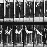 Muybridge: Photography Art Print