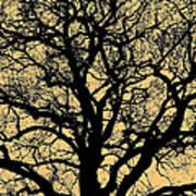 My Friend - The Tree ... Art Print