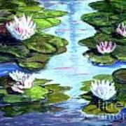 My Waterlilies Art Print
