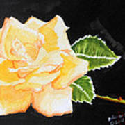 My Yellow Rose Art Print