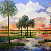 Myakka Sunset Art Print
