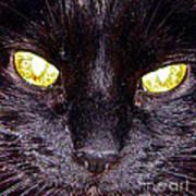 Mystic Eyes Art Print