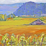 Napa Valley Mountains Art Print by Barbara Anna Knauf