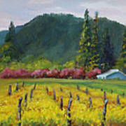 Napa Valley Mustards On Silverado Trail Art Print
