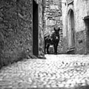 Narrow Street In Orvieto Italy Art Print