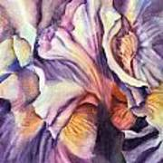 Natural Rhythms Art Print
