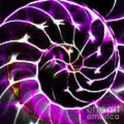 Nautilus Shell Ying And Yang - Electric - V1 - Violet Art Print by Wingsdomain Art and Photography