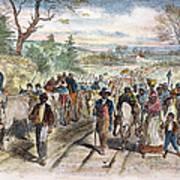 Nc: Freed Slaves, 1863 Art Print