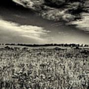 Nebraska Prairie Two In Black And White Art Print