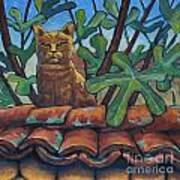 Neighbours Cat Art Print