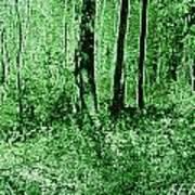 Neon Forest Art Print